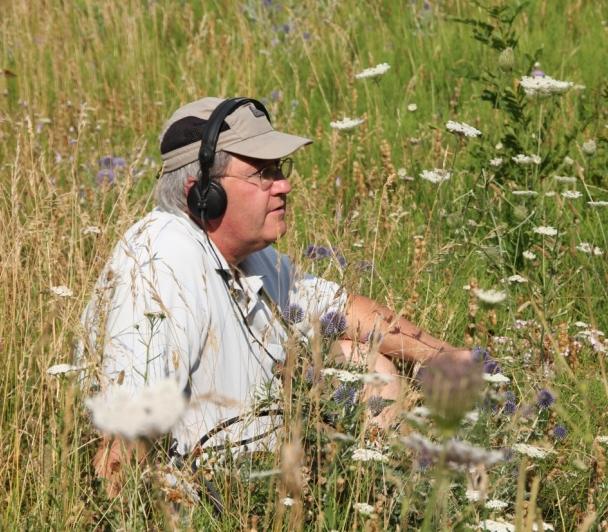 Les siestes musicales : l'Art des sons de la nature