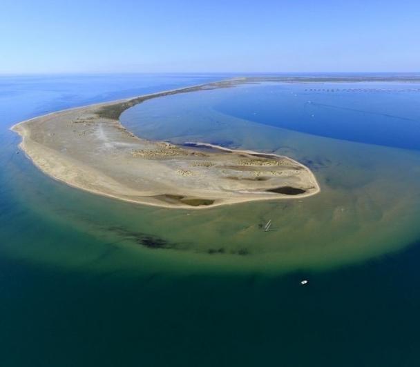 La Gracieuse : une dune entre terre et mer