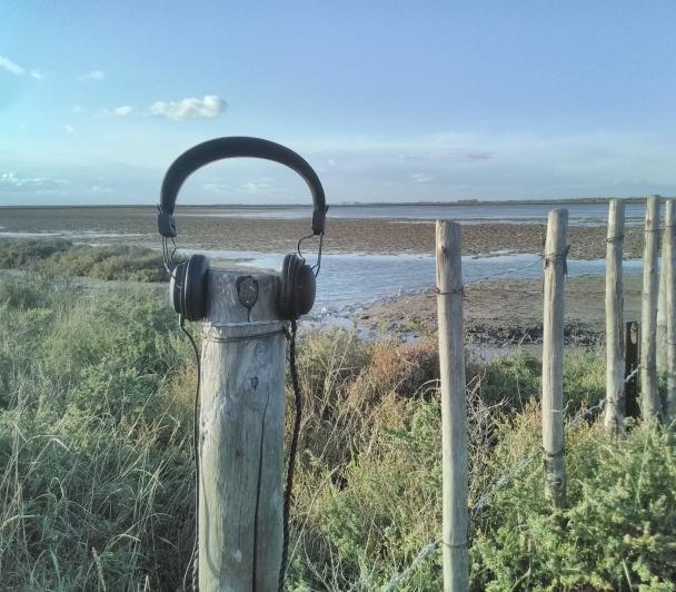 Camargue à l'écoute du vivant - Marais du Verdier