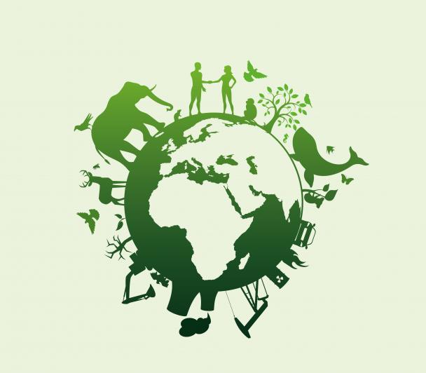 EDF : l'innovation au service de la biodiversité.