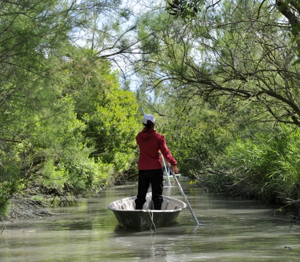 Les Marais en Nego-Chin