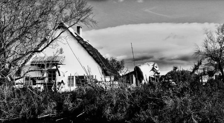 Les Cabanes de Cacharel