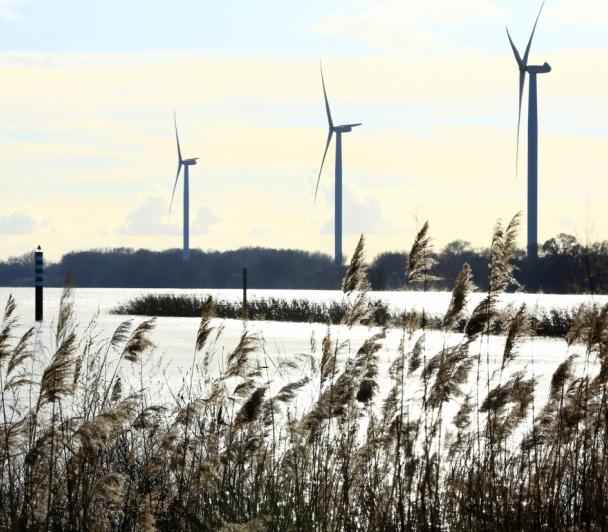 Comment l'énergie du vent devient de l'électricité