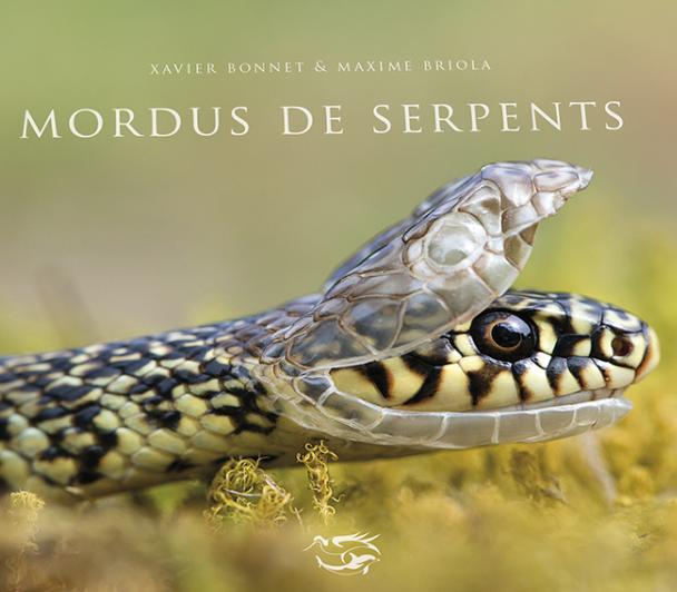Serpent du mythe à la réalité