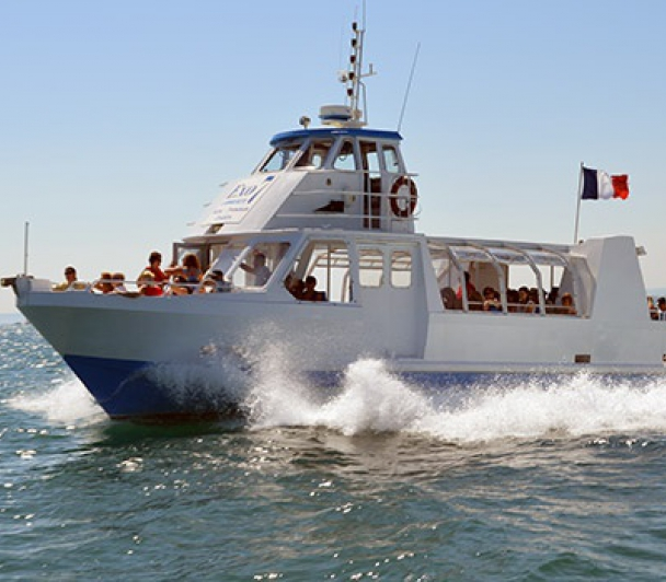 Découverte du Rhône en bateau