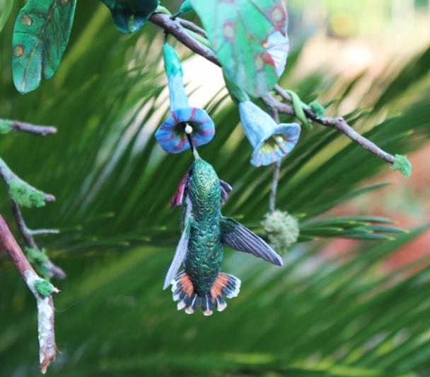 Oiseaux mouches de Fabrice TEURQUETY