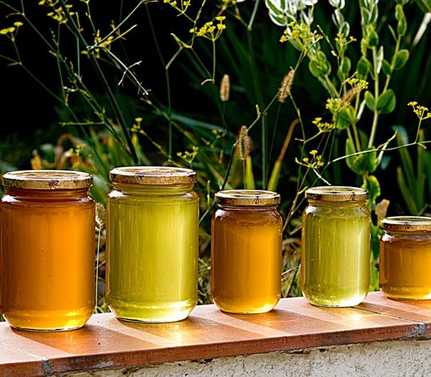 Il était une fois... le miel ! avec le Syndicat des Apiculteurs