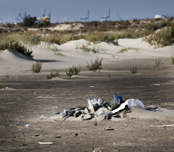 CLEAN DAY : Grande opération de nettoyage - REPORTÉE
