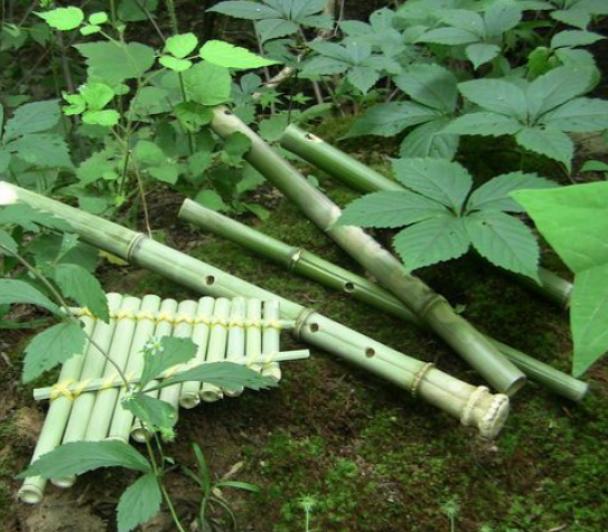 Atelier musique verte : fabrication d'une flute de pan