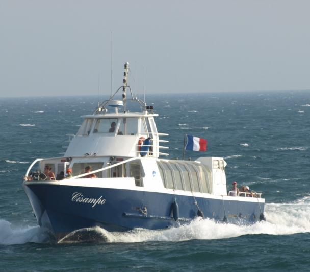 La Camargue vue de la mer