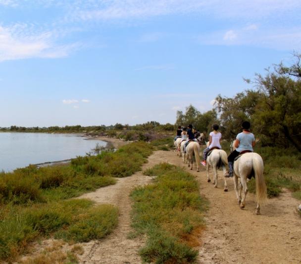 Visite guidée à cheval au cœur du domaine Paul RICARD