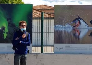 "Olivier LARREY, expositions ""Toundra"" et ""Grand Nord"""