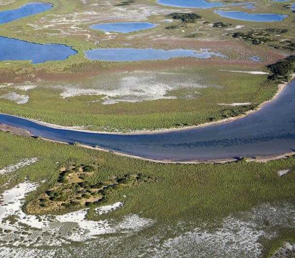 Lagunes et Marais, de la Ville à la Plage
