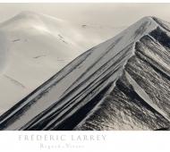 Larrey/Panthère des neiges