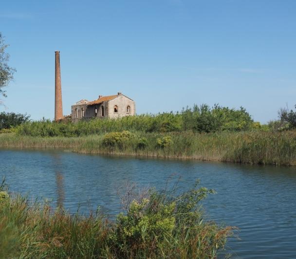 Visite au pays de l'or bleu : l'eau en Crau, une richesse pour le territoire