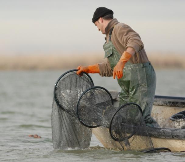 Atelier pêche à la Marette