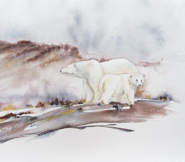 Journée découverte aquarelle dans la nature