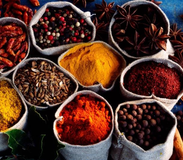 Les ateliers du goût - par le Conservatoire des cuisines de camargue