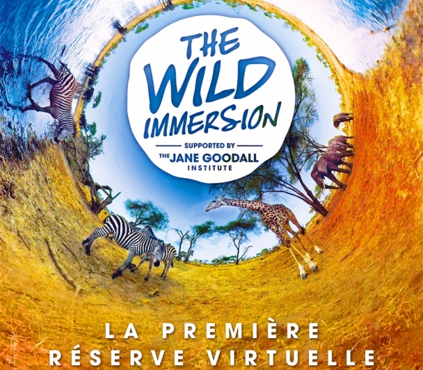 Wild Immersion