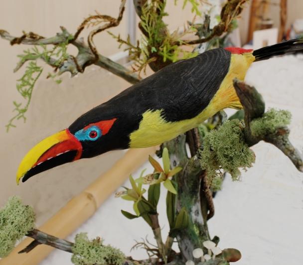 Oiseaux de Guyane : Act' 2 de Fabrice TEURQUETY