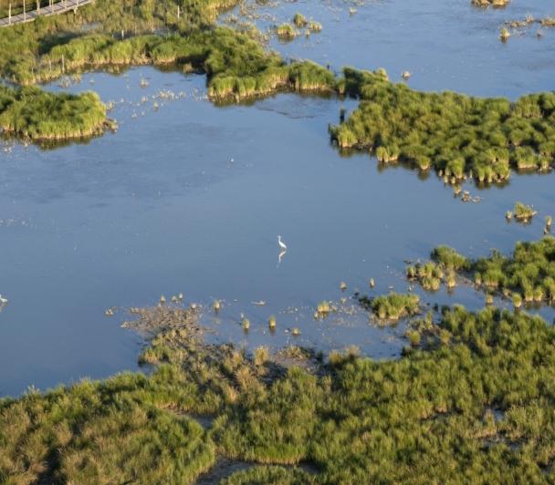 Erik Orsenna - Cinq raisons d'aimer les fleuves