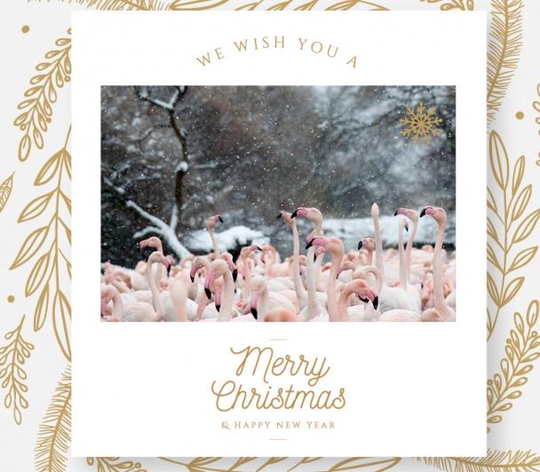 L'équipe du festival vous souhaite d'excellentes fêtes de fin d'année !