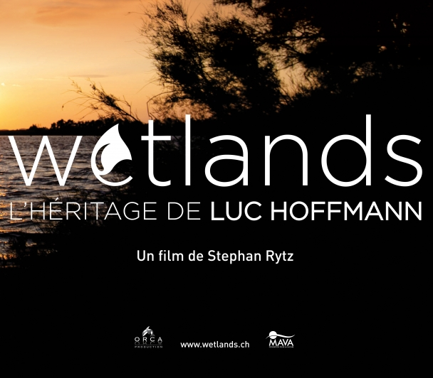 WETLANDS, un film réalisé par Stephan Rytz